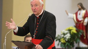 "Cardinal to young people: ""Suffering is not the end of the story"""