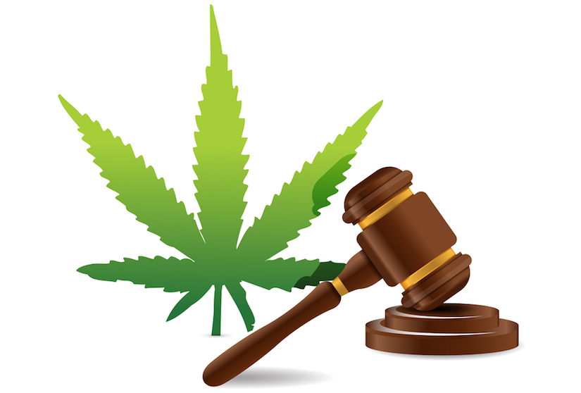 the icon of a gavel next to a hemp leaf icon