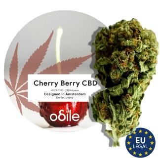 CBD kvety Odile, Cherry Berry, 5g