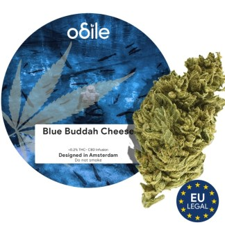 CBD kvety Odile, Blue Buddah Cheese, 3,5g