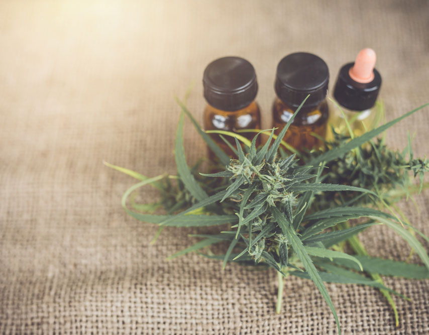 Is CBD Harmful to Your Liver? The Answer Isn't As Simple As You Might Think