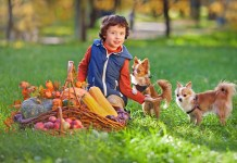 CBD For Kids & Pets