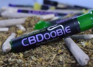 CBDoobie: The First Natural CBD Joint