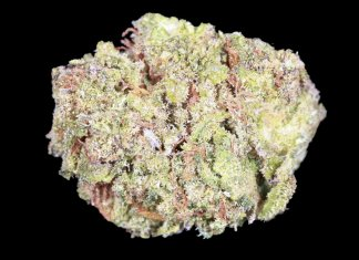 Green Gum High CBG Hemp Flower (Empire Wellness)