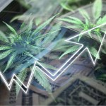 CBD-FDA-Regulation-Stock Market-CBDToday