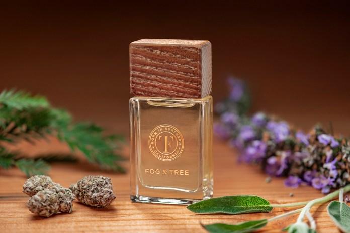 Fog & Tree Eau de Parfum-CBDToday