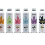 Mood33-Hemp Infused Herbal Tea-press release-CBDToday