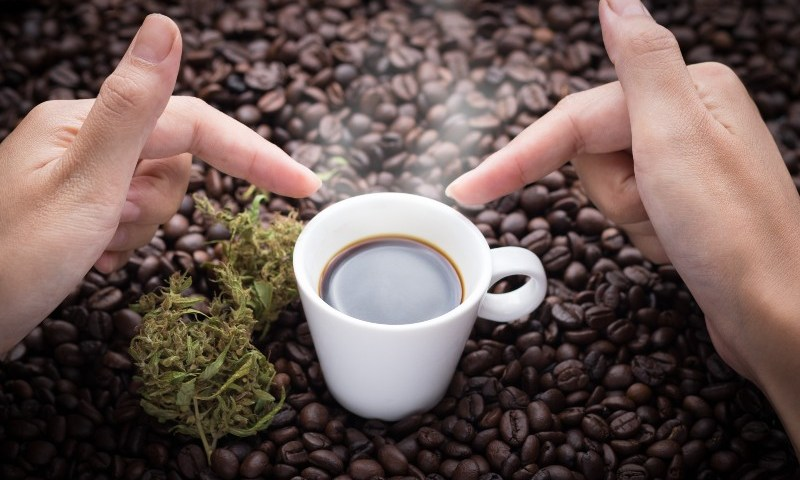 CBD Coffee Shop Opens In The UK (1)