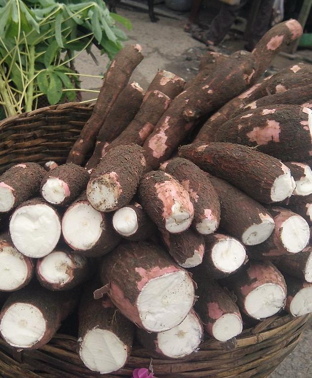 bif-cassava-market