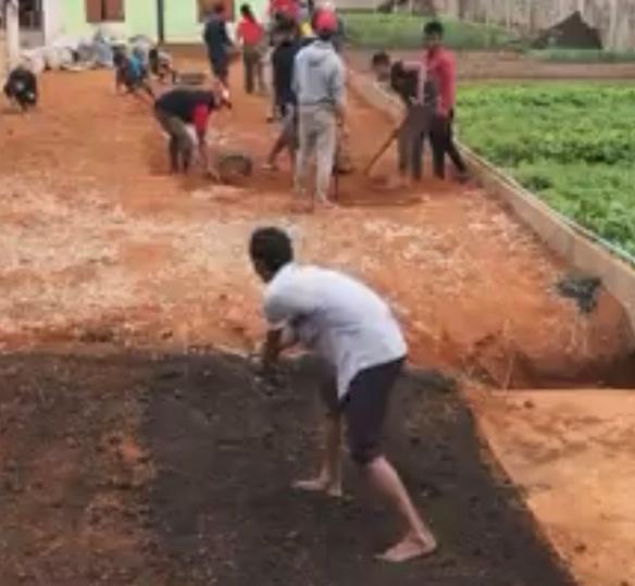 Photo of people plowing dirt