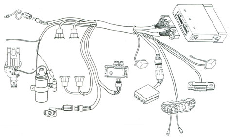 Wiring Diagram 1974 Beetle, Wiring, Free Engine Image For