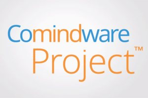 Comindware Project