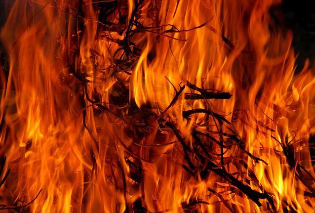 brush fire generic_465804