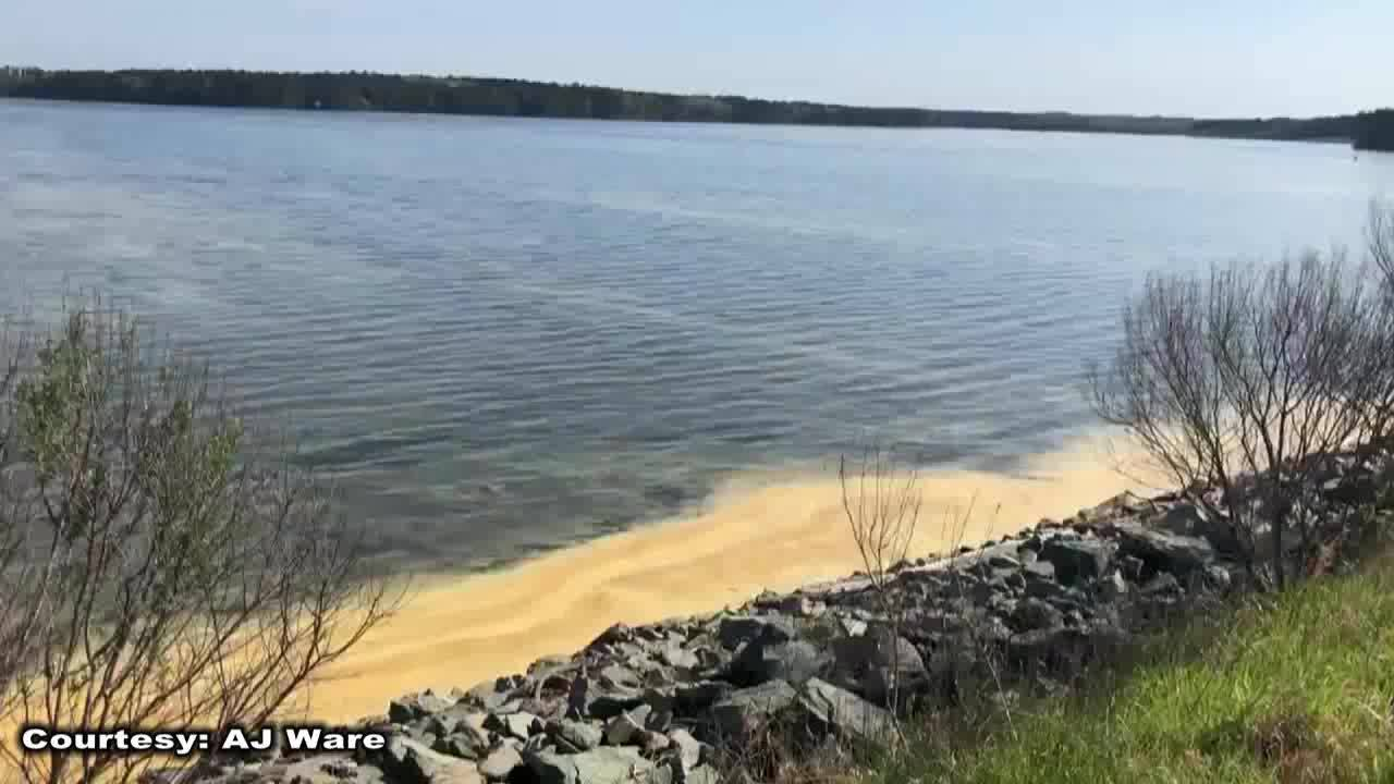 RAW_VIDEO__Pollen_covers_Jordan_Lake_nea_1_20190411204114