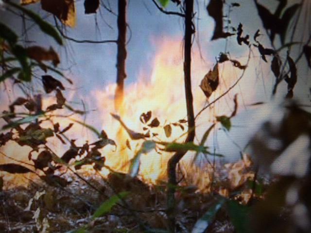 burn-it_209313
