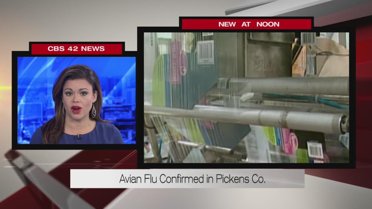 New avian flu cases in Alabama