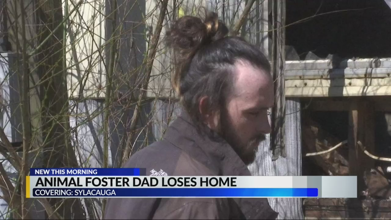 Animal foster dad loses home, cats and dogs