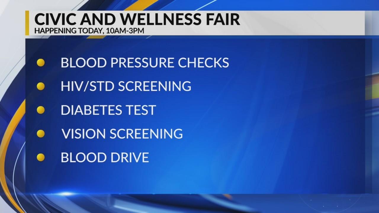 Civic and Wellness fair