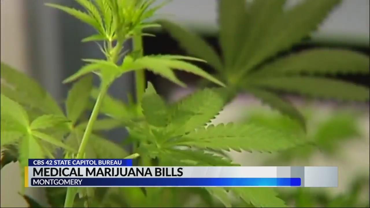 Lawmaker_talk_medical_marijuana_bills_0_20190326002912