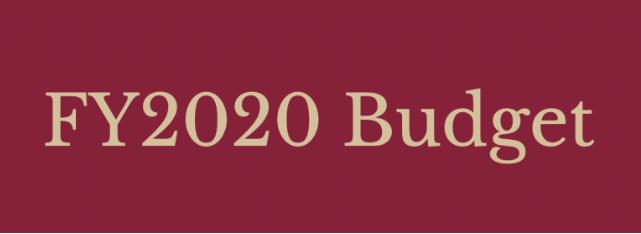 budget logo_1557846305614.PNG.jpg