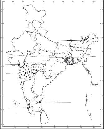 Social Science —2009 (Set II— Delhi)