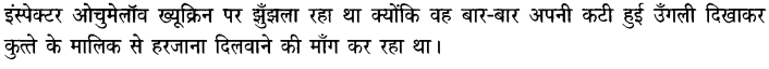 Chapter Wise Important Questions CBSE Class 10 Hindi B - गिरगिट 11