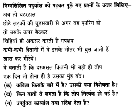 Chapter Wise Important Questions CBSE Class 10 Hindi B - तोप 24
