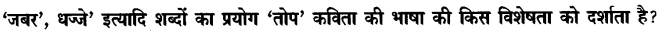 Chapter Wise Important Questions CBSE Class 10 Hindi B - तोप 3