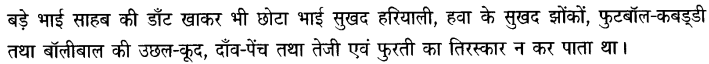 Chapter Wise Important Questions CBSE Class 10 Hindi B - बड़े भाई साहब 2