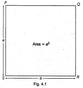 NCERT Class 9 Maths Lab Manual - Verify the Algebraic Identity (a-b)² = a²- 2ab+b² 1