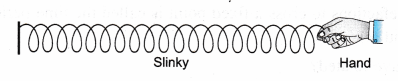 NCERT Class 9 Science Lab Manual - Velocity of a Pulse in Slinky 9