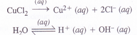 NCERT Solutions for Class 11 Chemistry Chapter 8 Redox Reactions 45