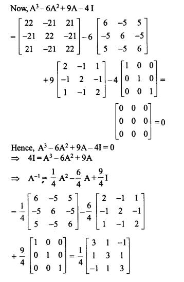 NCERT Solutions for Class 12 Maths Chapter 4 Determinants Ex 4.5 Q16.2