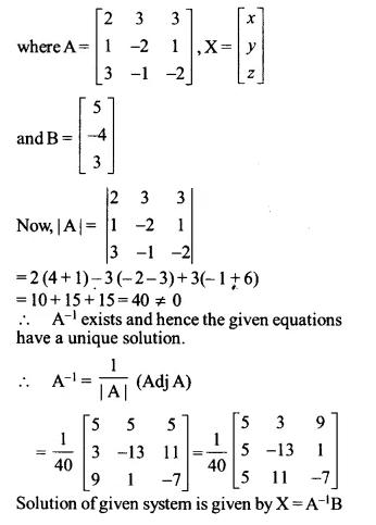 NCERT Solutions for Class 12 Maths Chapter 4 Determinants Ex 4.6 Q13.1