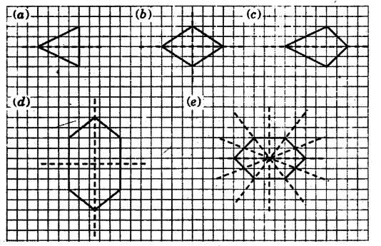 NCERT Solutions for Class 6 Maths Chapter 13 Symmetry 21
