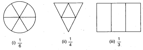 NCERT Solutions for Class 6 Maths Chapter 7 Fractions 3