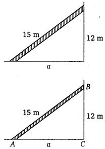 NCERT Solutions for Class 7 Maths Chapter 6 The Triangle and its Properties 24