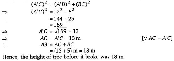 NCERT Solutions for Class 7 Maths Chapter 6 The Triangle and its Properties 29