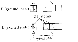 NCERT Solutions for Class 11 Chemistry Chapter 11 The p Block Elements 1