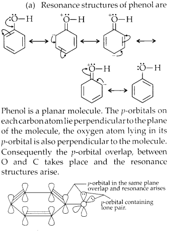 NCERT Solutions for Class 11 Chemistry Chapter 12 Organic Chemistry Some Basic Principles and Techniques 22