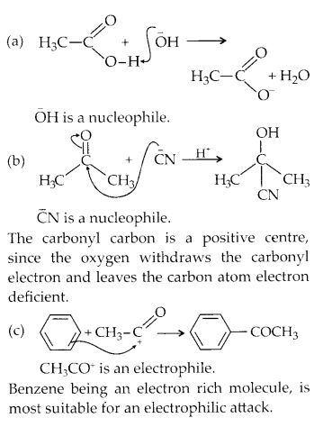 NCERT Solutions for Class 11 Chemistry Chapter 12 Organic Chemistry Some Basic Principles and Techniques 27