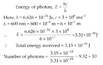 NCERT Solutions for Class 11 Chemistry Chapter 2 Structure of Atom 41