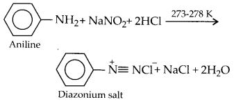 NCERT Solutions for Class 12 Chemistry Chapter 13 Amines 30