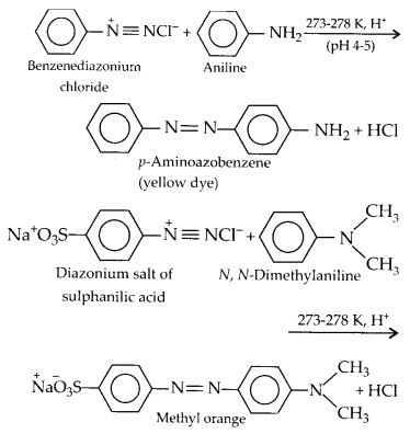 NCERT Solutions for Class 12 Chemistry Chapter 13 Amines 33