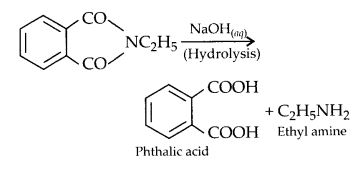 NCERT Solutions for Class 12 Chemistry Chapter 13 Amines 36