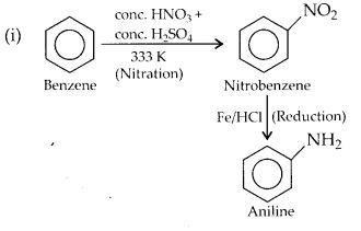NCERT Solutions for Class 12 Chemistry Chapter 13 Amines 4