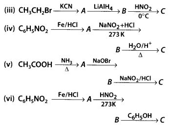 NCERT Solutions for Class 12 Chemistry Chapter 13 Amines 47