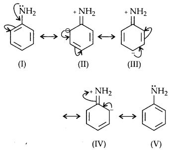NCERT Solutions for Class 12 Chemistry Chapter 13 Amines 61