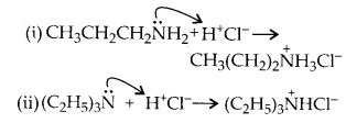 NCERT Solutions for Class 12 Chemistry Chapter 13 Amines 7
