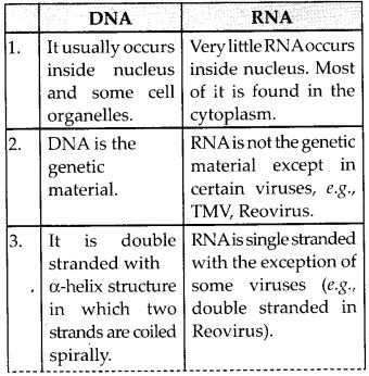 NCERT Solutions for Class 12 Chemistry Chapter 14 Biomolecules 11